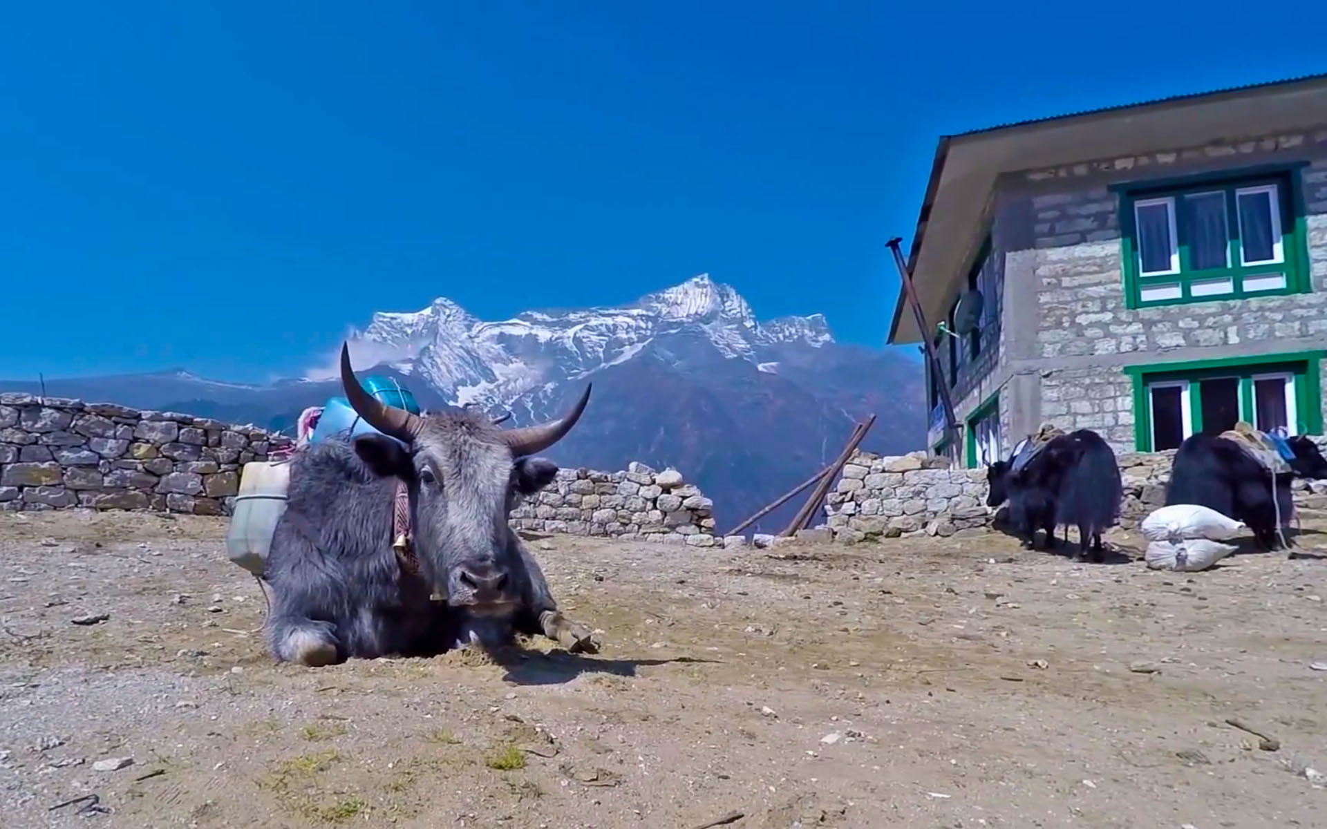 Everest Base Camp (Standard)