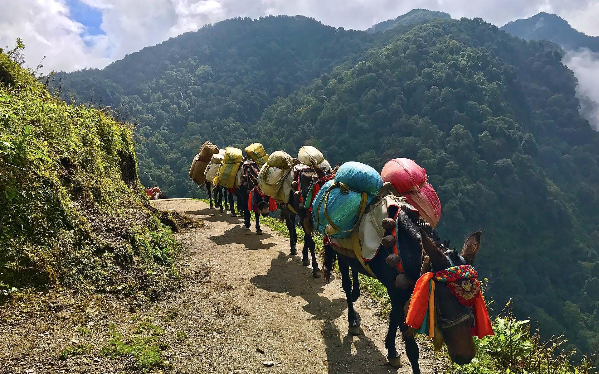 Annapurna Base Camp (Standard)