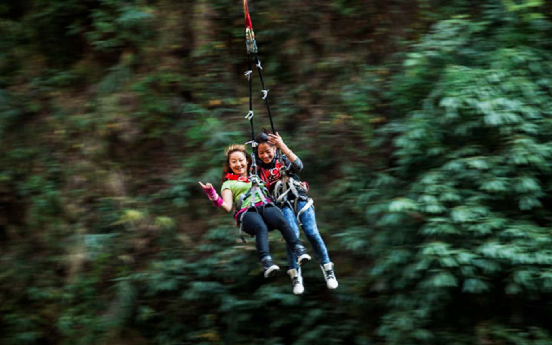 Tandem swing-A New Product!